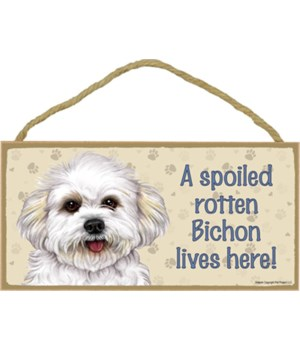 Bichon (puppy cut) Spoiled 5x10