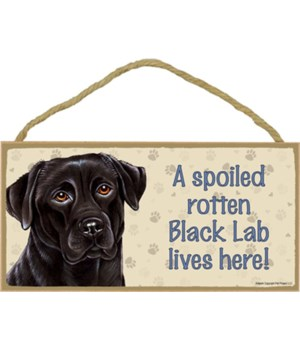 Black Lab Spoiled 5x10