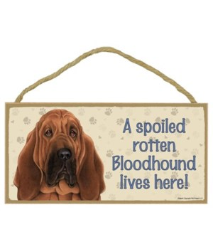 Bloodhound Spoiled 5x10