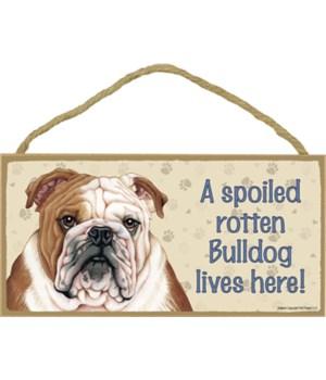 Bulldog Spoiled 5x10