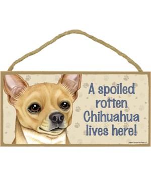 Chihuahua (Tan) Spoiled 5x10