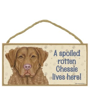 Chessie (Chesapeake Bay Retriever) Spoil