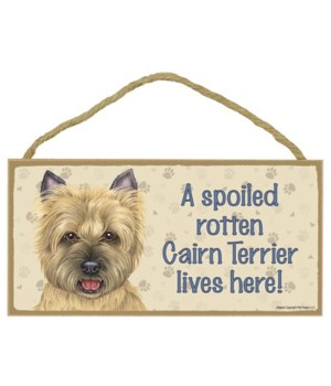 Cairn Terrier (tan) Spoiled 5x10