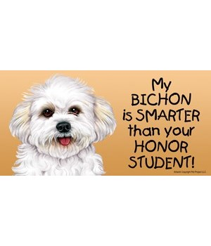My Bichon (puppy cut / short hair cut) i