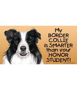 My Border Collie is smarter than your ho