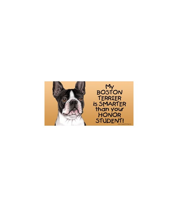 My Boston Terrier is smarter than your h