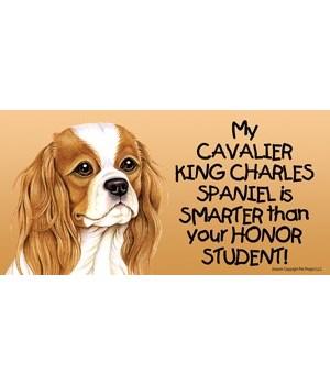 My Cavalier King Charles Spaniel is smar
