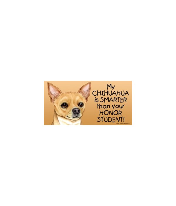 My Chihuahua (tan) is smarter than your