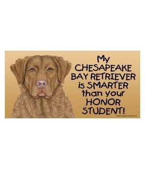 My Chesapeake Bay Retriever is smarter t