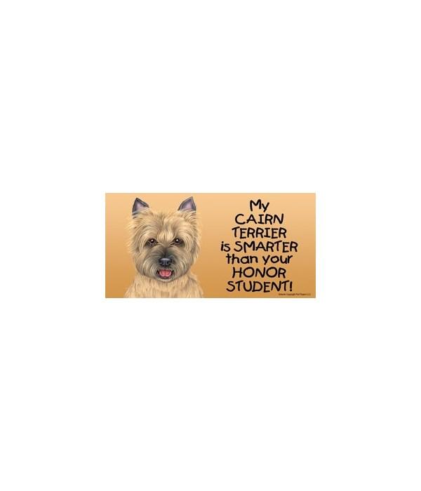 My Cairn Terrier (tan) is smarter than y
