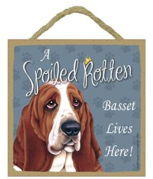 Basset Spoiled 5x5 Plaque