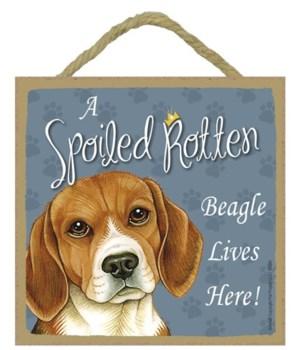 Beagle Spoiled 5x5 Plaque