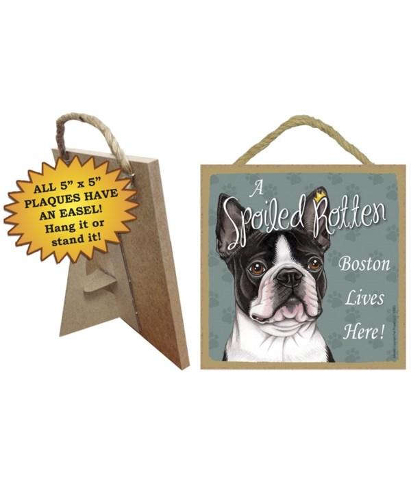 Boston Terrier Spoiled 5x5 Plaque
