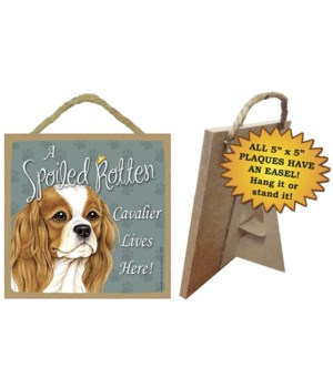 Cavalier King Chas Sp Spoiled 5x5 Plaque