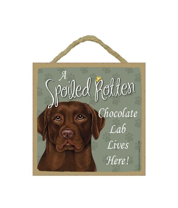 Chocolate Lab Spoiled 5x5 Plaque