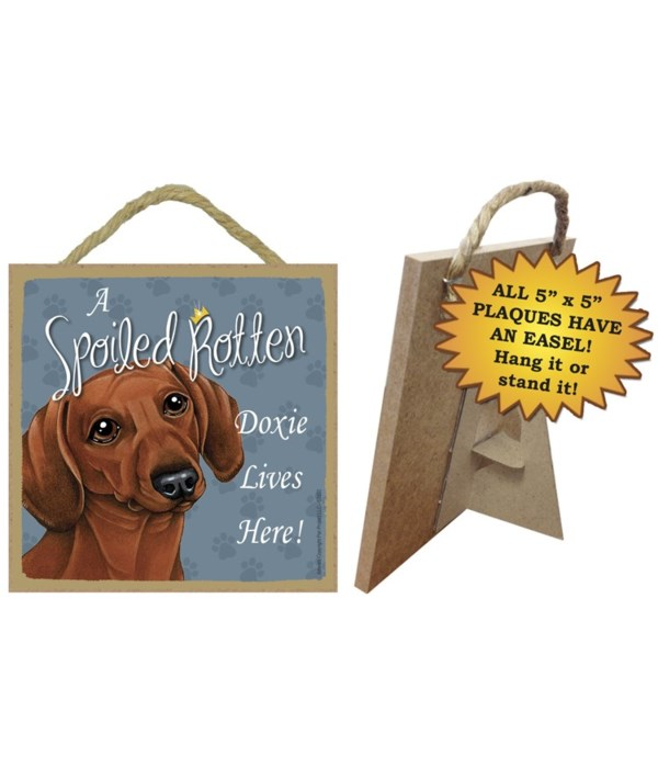 Dachsund Brown Spoiled 5x5 Plaque
