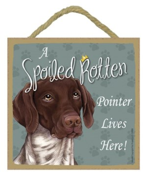 German Shorthair Spoiled 5x5 Plaque