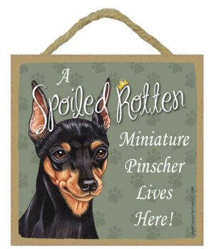 Min Pin Spoiled 5x5 Plaque