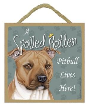 Pitbull Spoiled 5x5 Plaque
