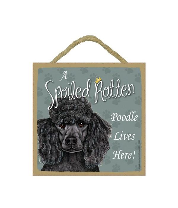 Poodle Black Spoiled 5x5 Plaque