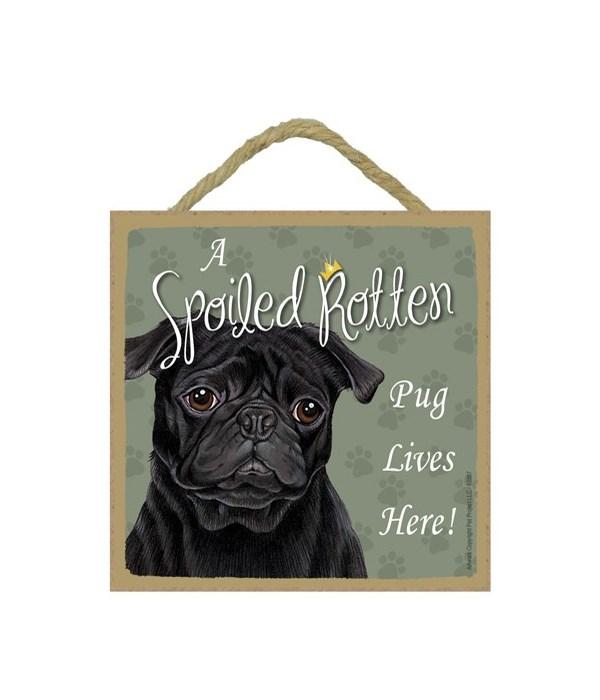 Pug Black Spoiled 5x5 Plaque