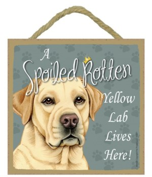 Yellow Lab Spoiled 5x5 Plaque