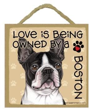 Boston Terrier Love Is.. 5x5 plaque
