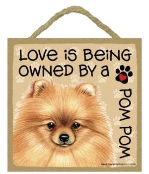 Pomeranian Love Is.. 5x5 plaque