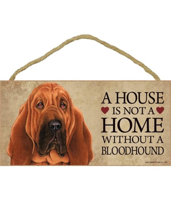 Bloodhound House 5x10