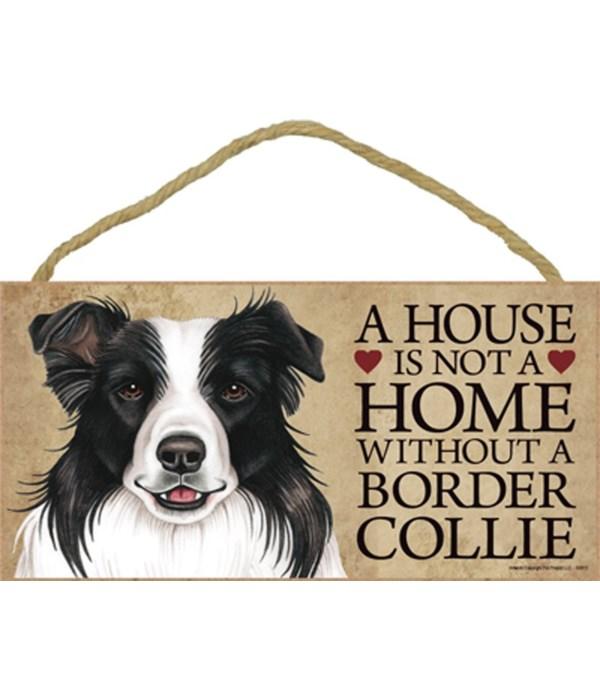 Border Collie House 5x10