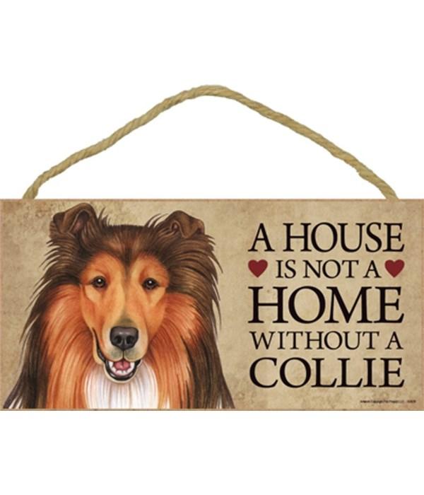 Collie House 5x10