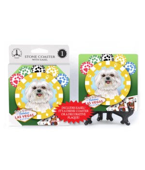 Maltese (Puppy Cut) - Vegas Dog