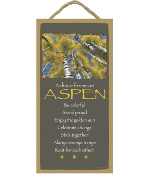 Advice from an Aspen 5x10