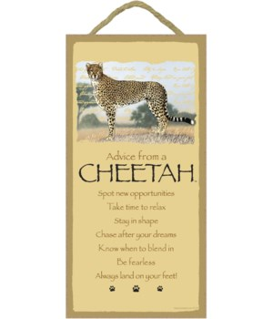 Advice from a Cheetah 5x10