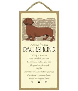Advice from a Dachshund 5x10