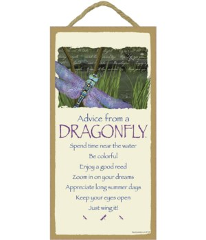 Advice from a Dragonfly 5x10