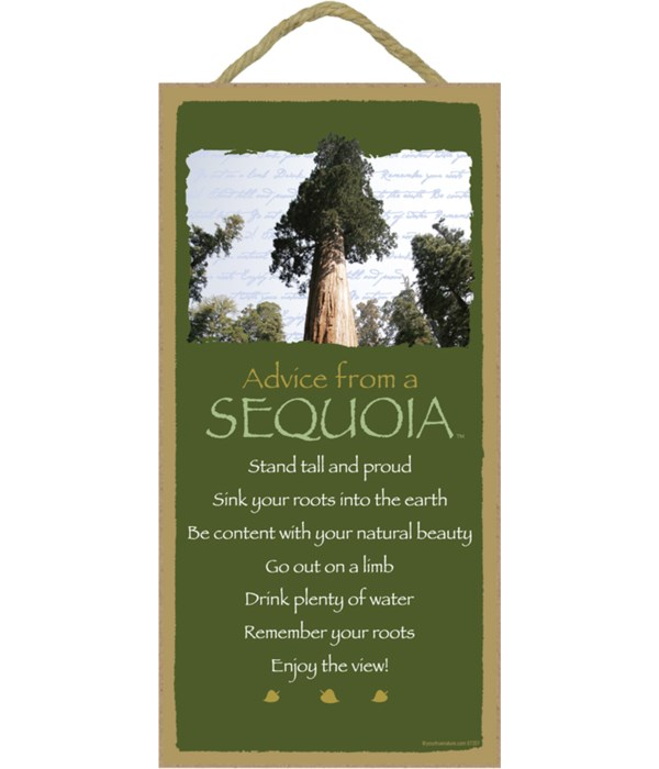 *Advice from a Sequoia 5x10