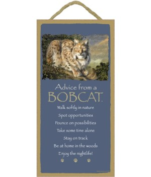 Advice from a Bobcat 5x10
