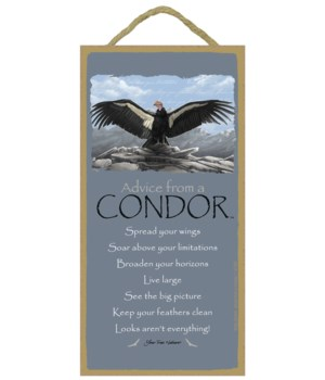 Advice from a Condor 5x10