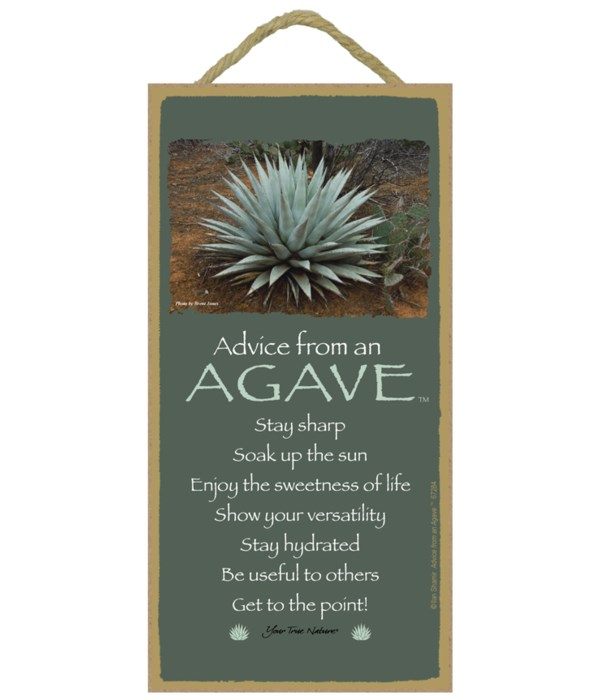 Advice from a Agave 5 x10