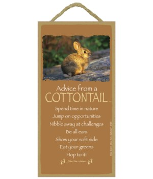 Advice from a Cottontail 5x10 sign
