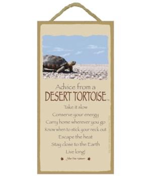 Advice from a Desert Tortoise