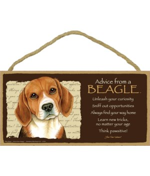 Advice from a Beagle 5x10