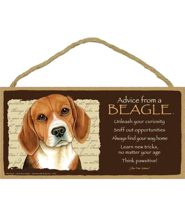 Advice from a Beagle 5x10