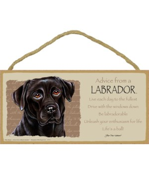 Advice from a (Black) Labrador 5x10