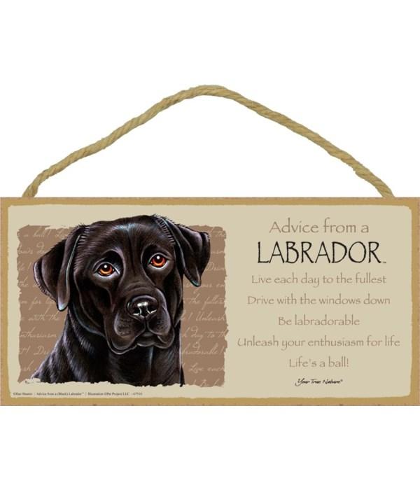 Advice from a (Black) Labrador 5x10