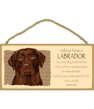 Advice from a (Chocolate) Labrador 5x10
