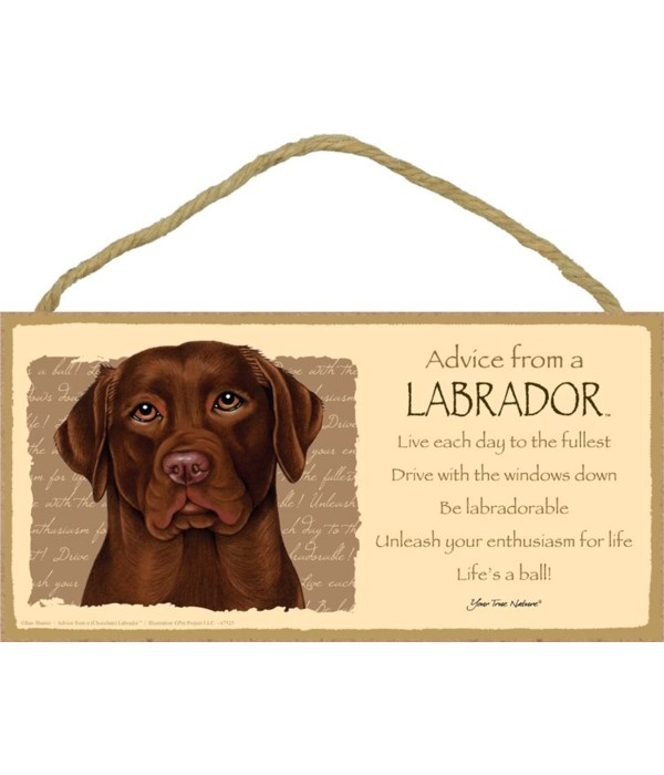 Advice from a (Chocolate) Labrador 5x10