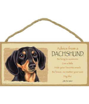 Advice from a Dachshund (black & tan) 5x
