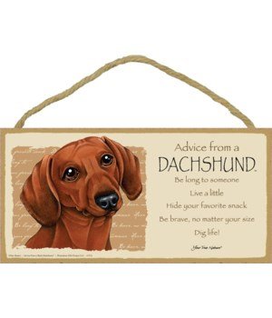 Advice from a Dachshund (red) 5x10